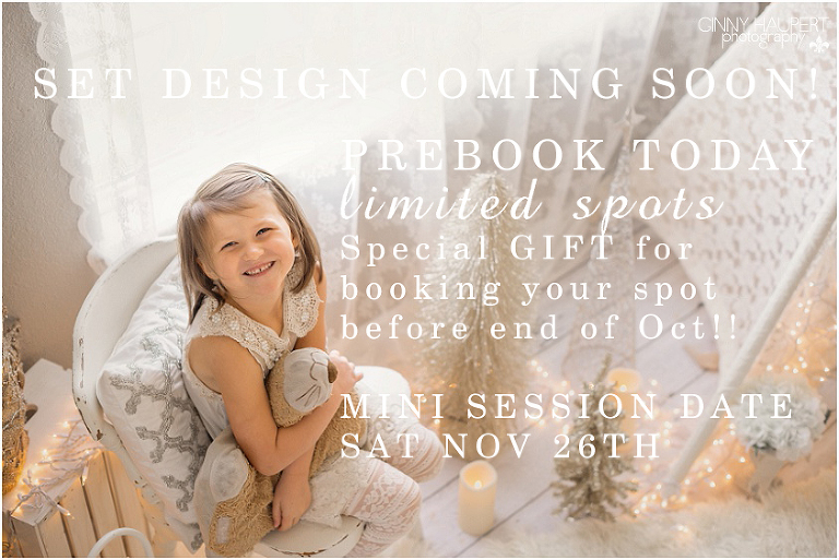 2016 denver christmas mini sessions